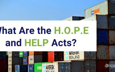 What Are the H.O.P.E and HELP Acts?