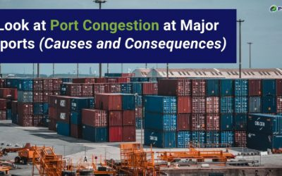 A Look at Port Congestion at Major Seaports (Causes and Consequences)