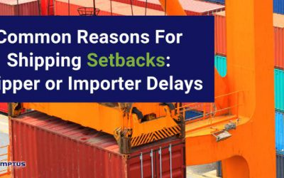 Common Reasons For Shipping Setbacks: Shipper or Importer Delays