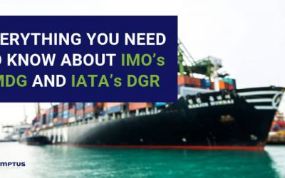 Everything You Need to Know About IMO's IMDG and IATA's DGR